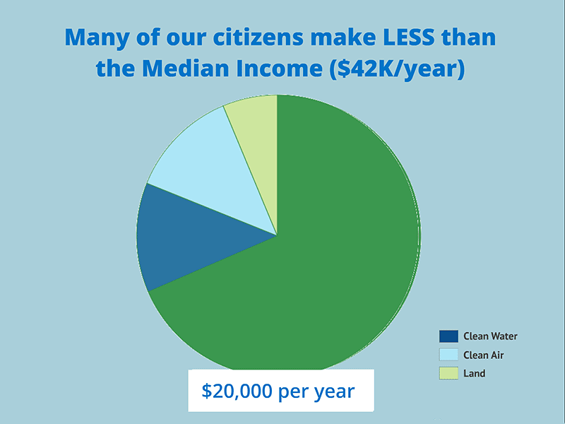 pie chart showing what portion of $20000 income goes towards environmental protection